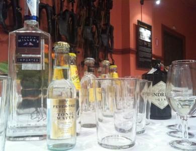 Taller Cata de Gin tonics por Eventos de Autor_8