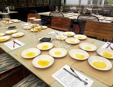 Cata de Aceites de Oliva Virgen Extra por Eventos de Autor